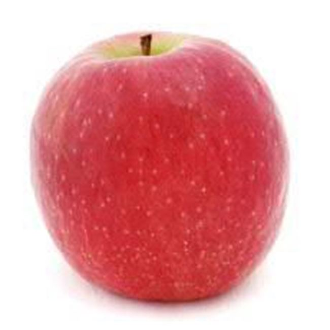 Picture of APPLE PINK LADY LRG