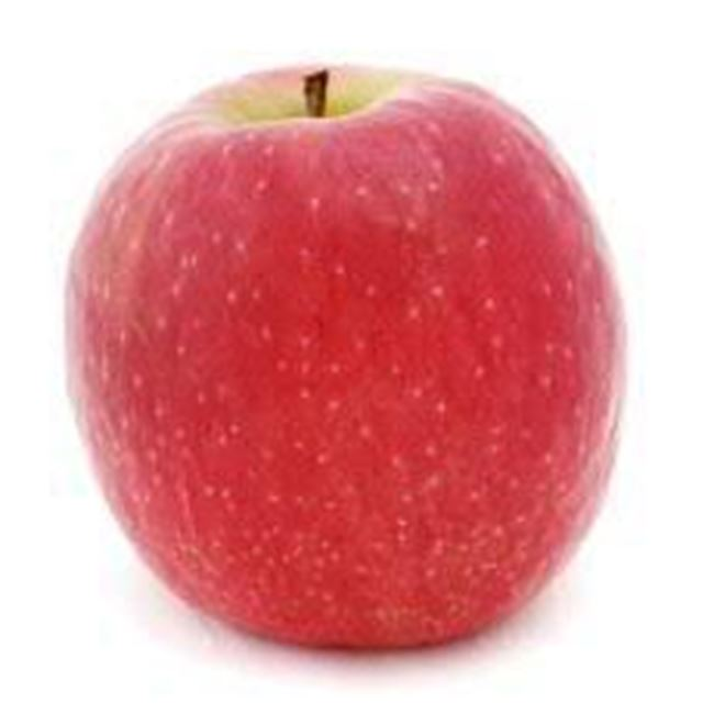 Picture of APPLE PINK LADY SML