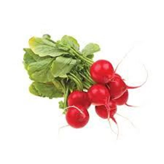 Picture of RADISH RED BUNCH